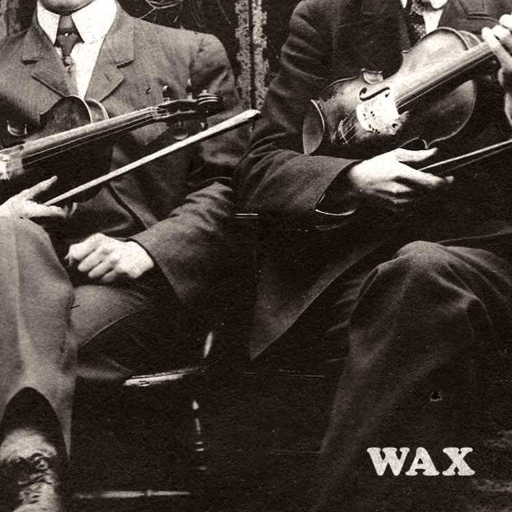 "The Alpacas ""Wax"""
