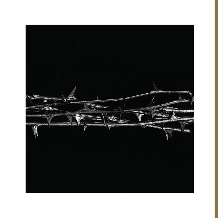 Amenra's 'De Doorn' Is Transcendental Ambient Doom from One of the Genre's Best