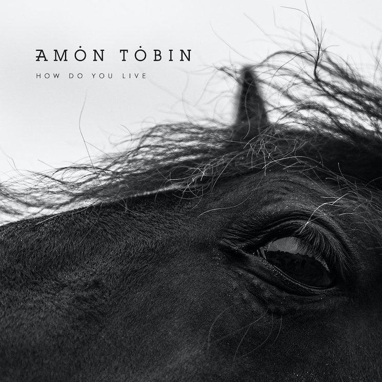 Amon Tobin Details New Album 'How Do You Live'