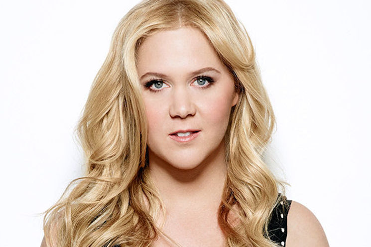 Amy Schumer Clarifies Status of Show After Cryptic Tweets
