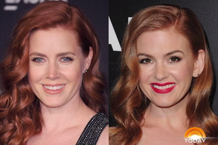 Isla Fisher Pasted Amy Adams' Face on Her Family Christmas Cards and No One Noticed
