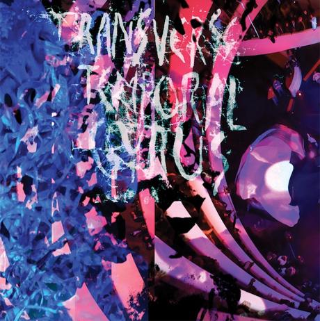 Animal Collective 'Transverse Temporal Gyrus' (album stream)