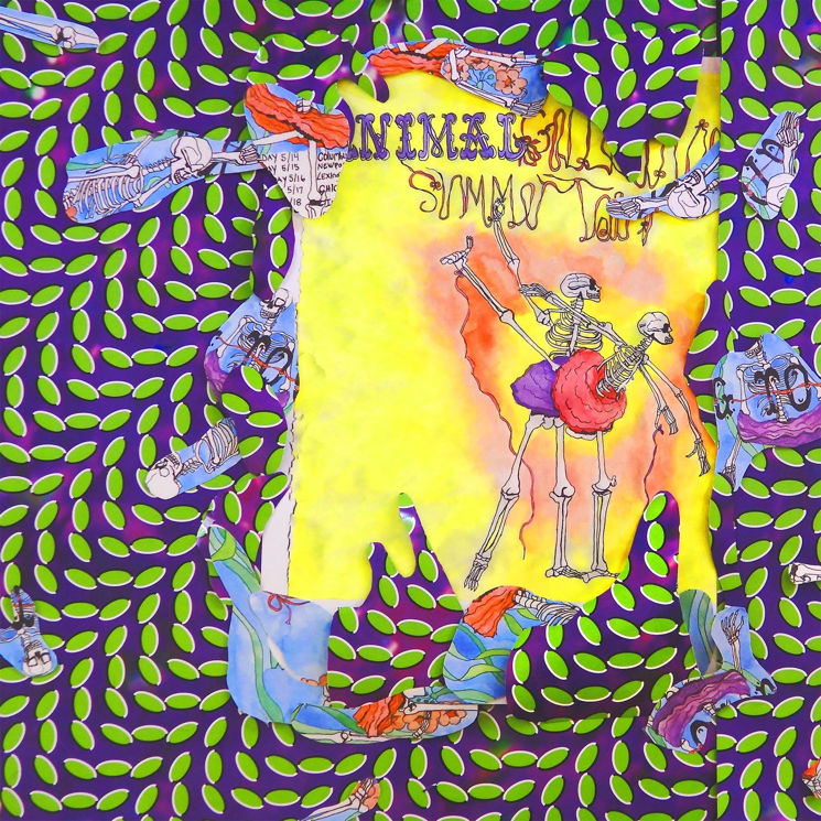 Animal Collective Celebrate 10th Anniversary of 'Merriweather Post Pavilion' with New Live Album