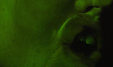 "Animalia ""Stifling"" (video) (dir. by Brandon Cronenberg)"