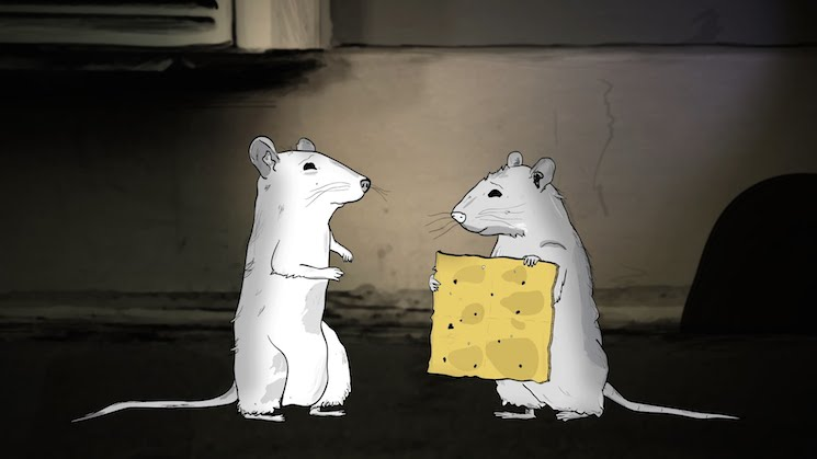 Duplass Brothers' 'Animals' Cartoon Gets Two-Season Order from HBO