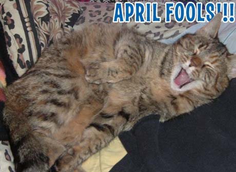 The Exclaim! Guide to April Fool's Day's Fake Stories