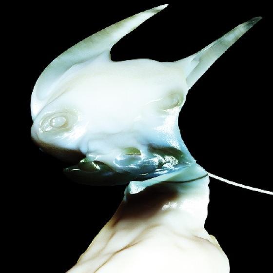 Arca Drops Digital Deluxe Version of 'Xen'
