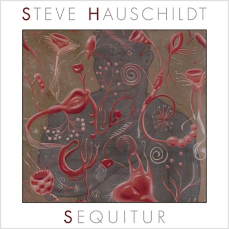 Steve Hauschildt Sequitur