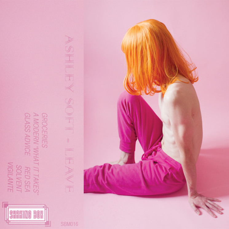 Ashley Soft 'Leave' (album stream)