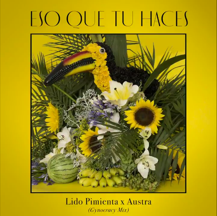 Austra Remixes Lido Pimienta's 'Eso Que Tu Haces'