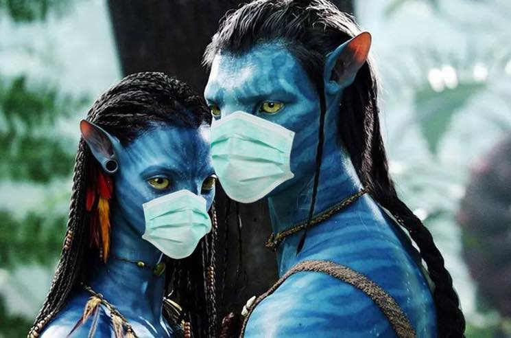 ​'Avatar' Sequels Halt Production in New Zealand Due to Coronavirus