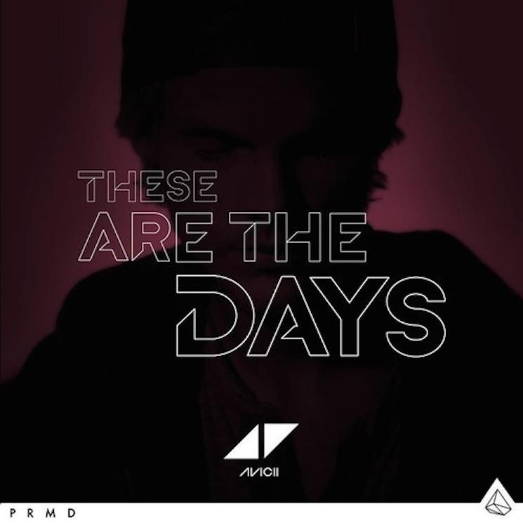 Avicii 'The Days' (ft. Brandon Flowers)
