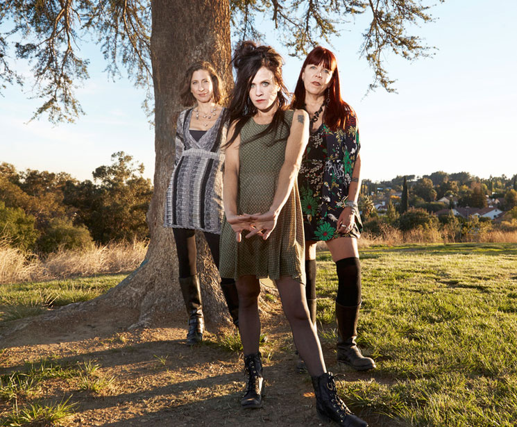 Babes in Toyland Extend Reunion Tour