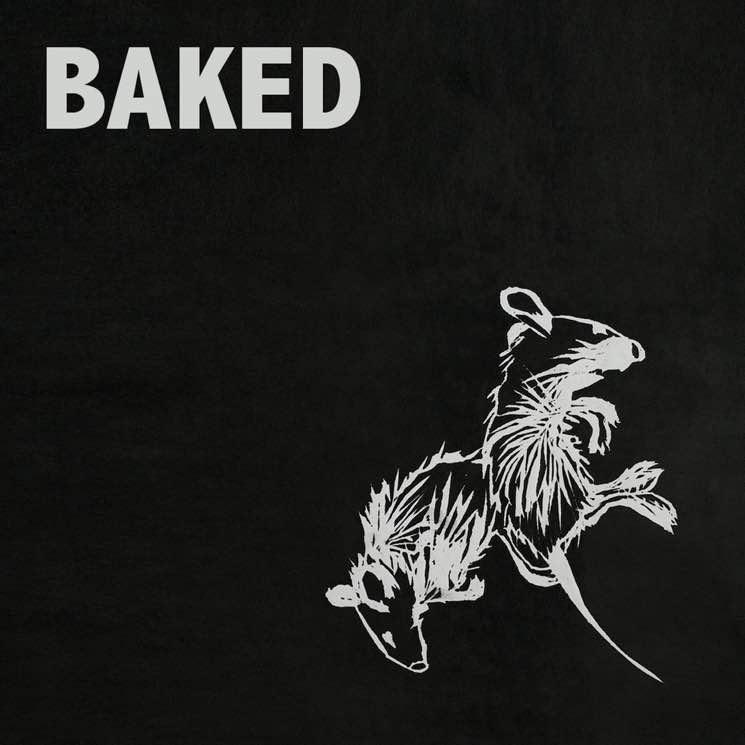 Baked Farnham