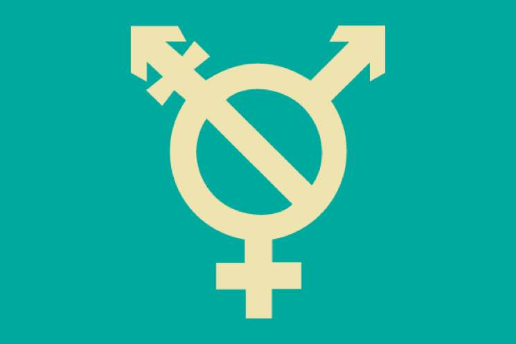 ​Artists and Labels Team Up with Bandcamp to Support Trans Rights