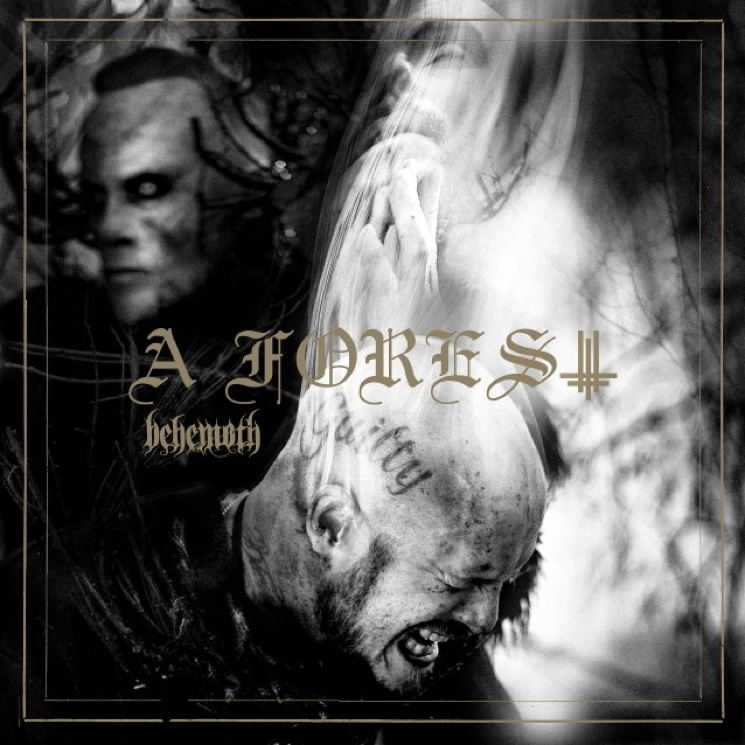 Behemoth's 'A Forest' EP Distills the Band Down to Their Essence