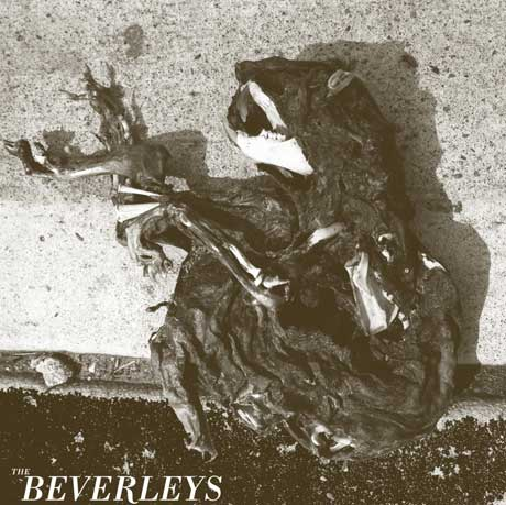 The Beverleys Premiere Track from New Buzz Records EP, Book Canadian Dates with HSY