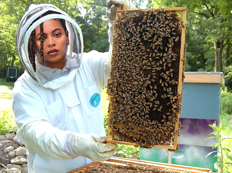 Beyoncé Opens Up About Her Hobby as a Beekeeper