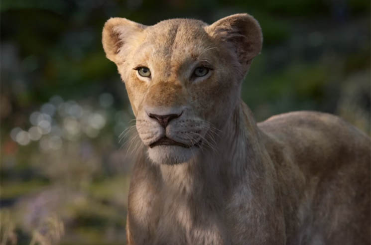 Here's the First Look at Beyoncé as Nala in the 'The Lion King'