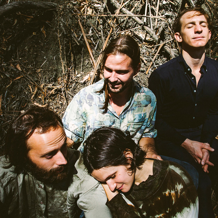 Big Thief Share New Song 'Love in Mine'