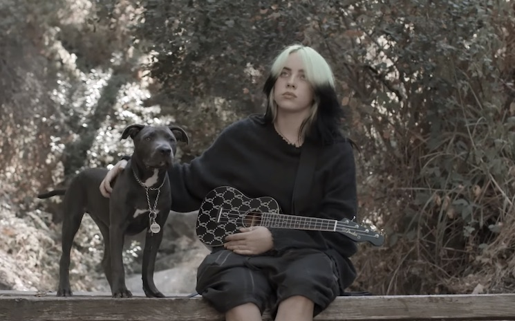 Billie Eilish Gets Her Own Signature Ukulele