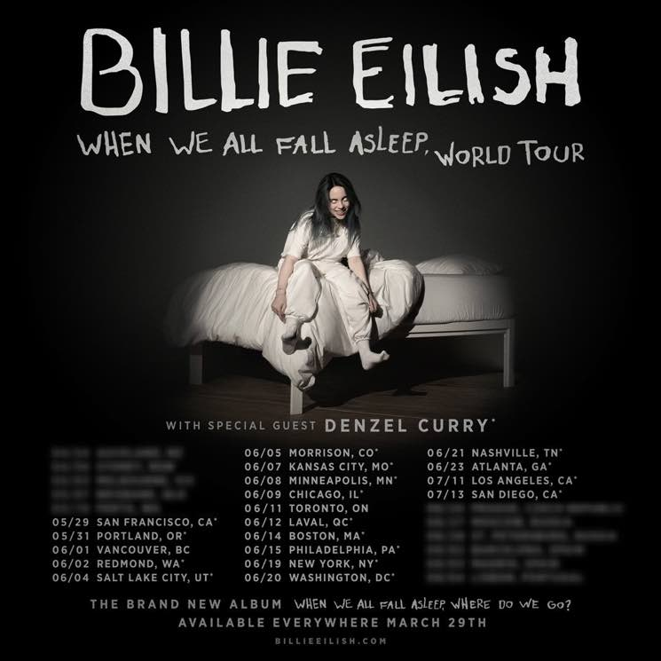 "​Billie Eilish Maps Out North American ""When We All Fall Asleep Tour"""