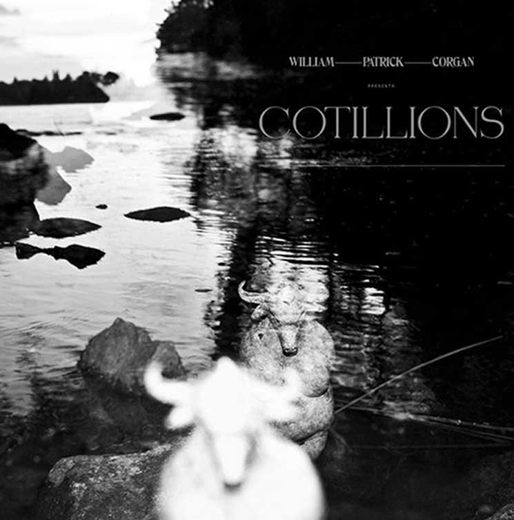 Stream Billy Corgan's New Solo Album 'Cotillions'