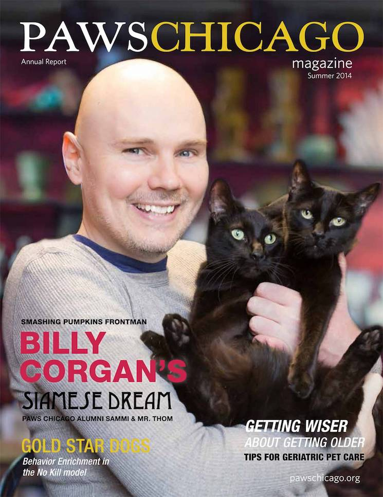 Cat Lover Billy Corgan Is on the Cover of 'Paws' Magazine Again