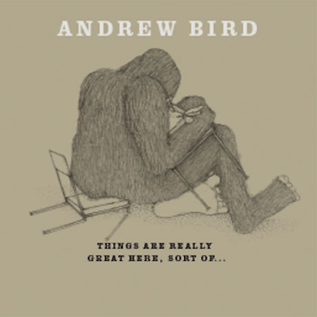 Andrew Bird Announces Album of Handsome Family Covers