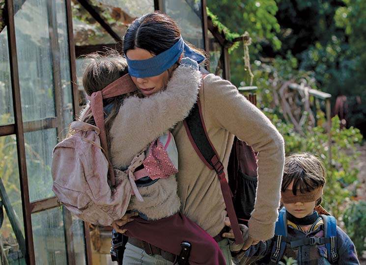 "Netflix Warns Viewers of Dangerous ""Bird Box Challenge"""