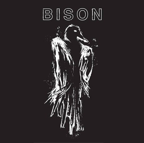 "Bison Return with New Material, Stream ""1000 Needles"" Single"