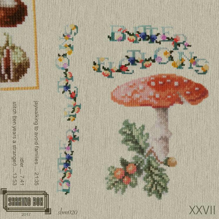 Bitter Fictions 'XXVII' (album stream)