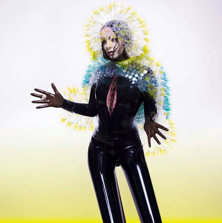 Björk Rushes Out the Release of 'Vulnicura' Today
