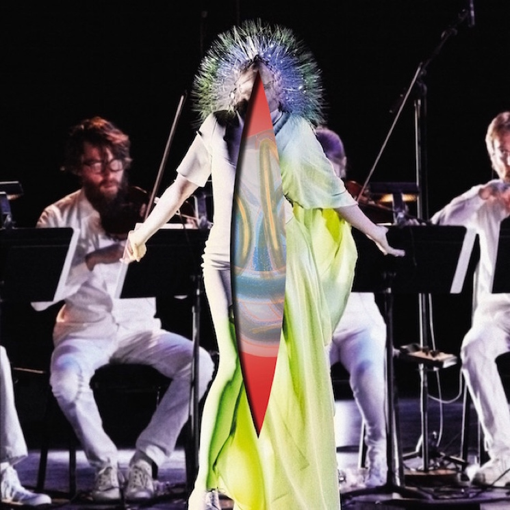Björk Overhauls 'Vulnicura' for 'Acoustic Version'