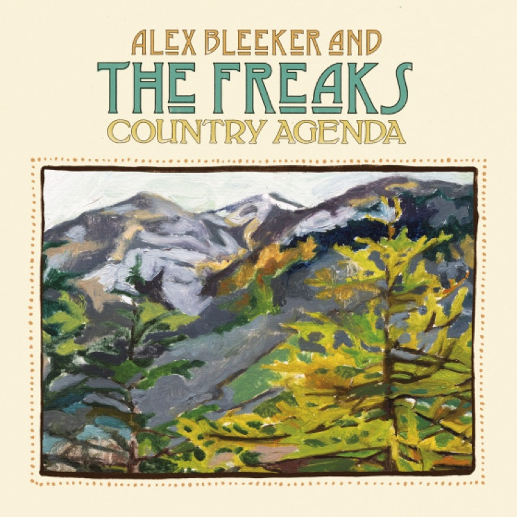 Alex Bleeker & the Freaks Announce 'Country Agenda' LP