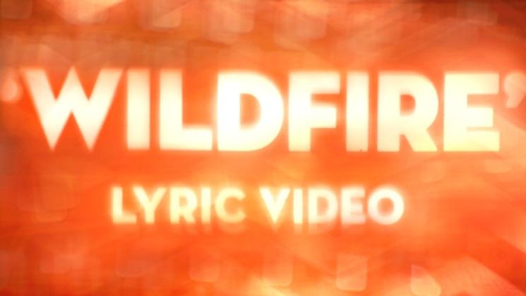 "Blink-182 ""Wildfire"""