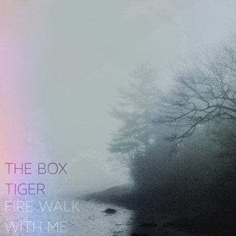 "The Box Tiger ""Fire Walk with Me"""