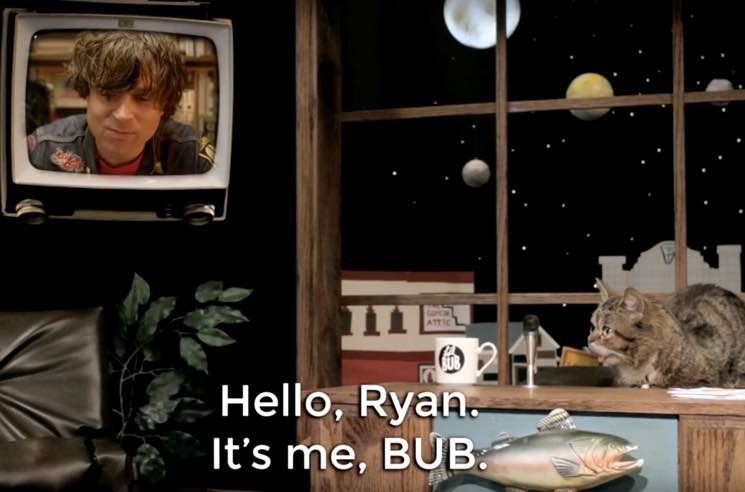 ​Watch Ryan Adams Get Interviewed by Celebrity Cat Lil BUB