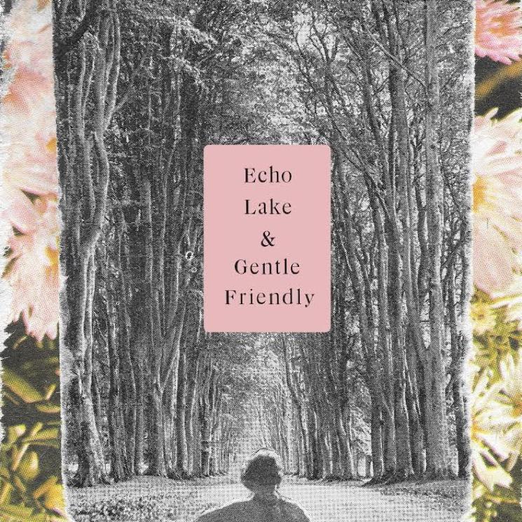 """Echo Lake / Gentle Friendly """"Wait Out"""" / """"Quiet Storrrrrm"""" (split 7-inch)"""