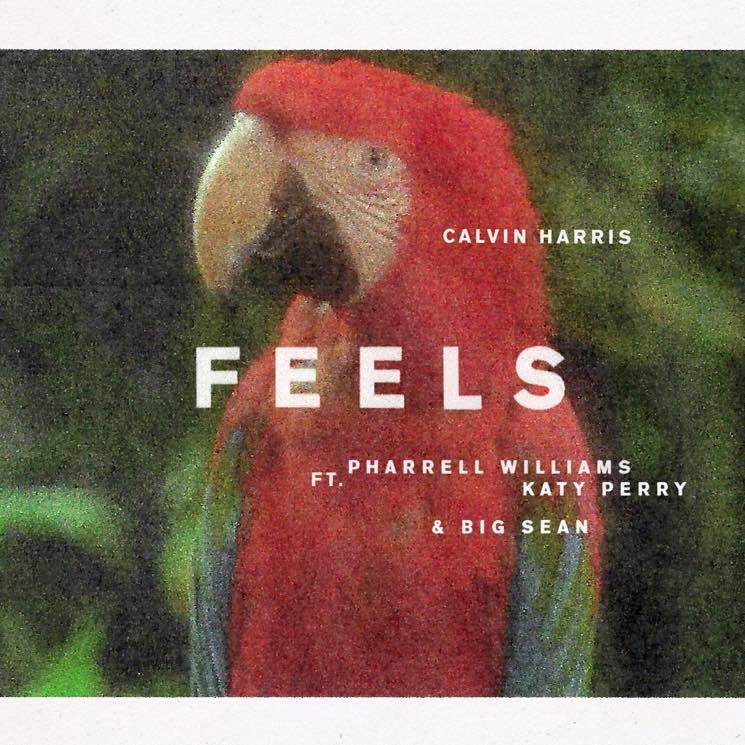 ​Calvin Harris Teams with Pharrell, Katy Perry and Big Sean for 'Feels'