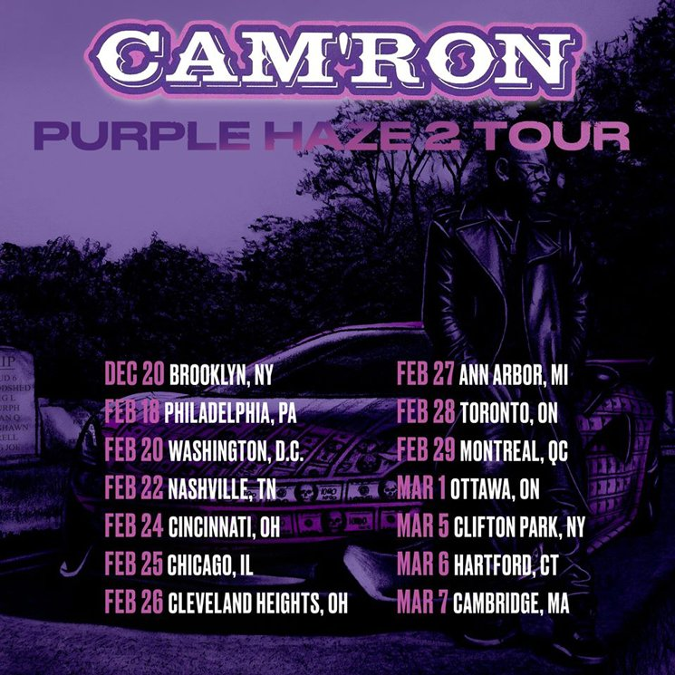 Cam'ron Is Bringing His 'Purple Haze 2 Tour' to Canada