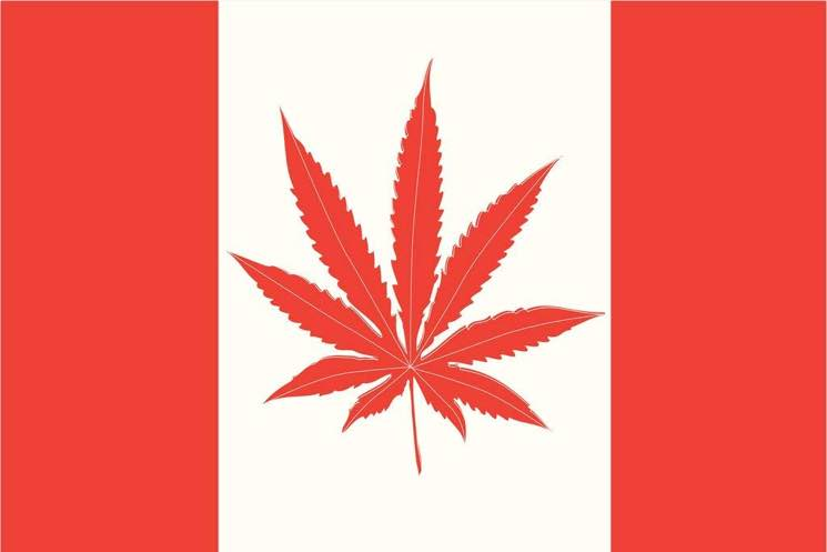 ​Here's How Canadian Musicians Are Celebrating Weed Legalization