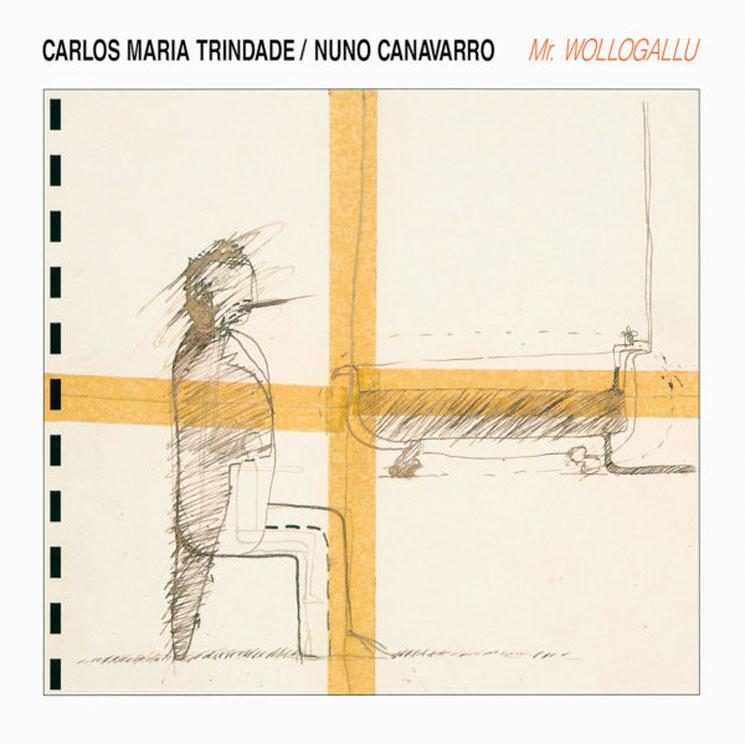 Nuno Canavarro's Lost Avant-Electronic Classic 'Mr. Wollogallu' Treated to Reissue