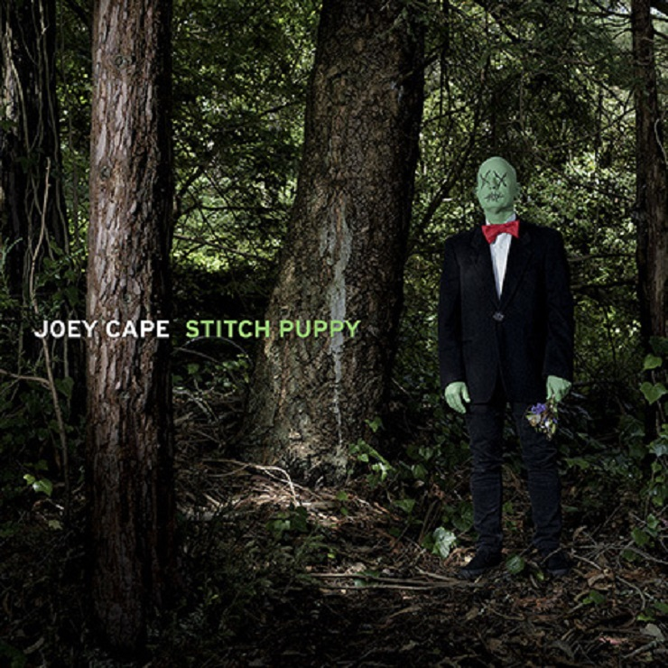 Lagwagon's Joey Cape Unveils 'Stitch Puppy' Solo Album
