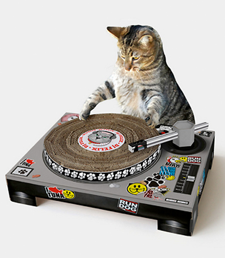 Attention Aspiring Cat DJs: Get Scratching with Your Very Own Decks