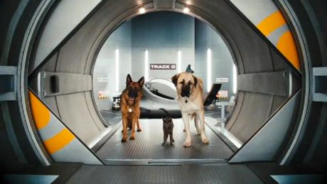 Cats & Dogs: The Revenge of Kitty Galore [Blu-Ray] Brad Peyton