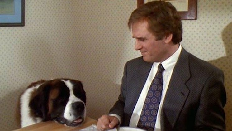 'Beethoven' and 'Heartbreak Kid' Star Charles Grodin Dead at 86