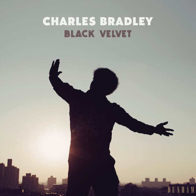 "​Charles Bradley Shares ""Can't Fight the Feeling"""