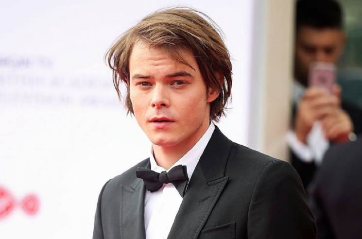 Charlie Heaton Missed the 'Stranger Things' Premiere After Traces of Cocaine Found in Luggage