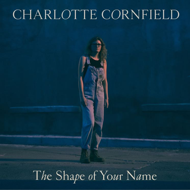 Charlotte Cornfield The Shape of Your Name